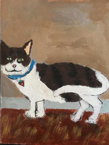 Susans cat
